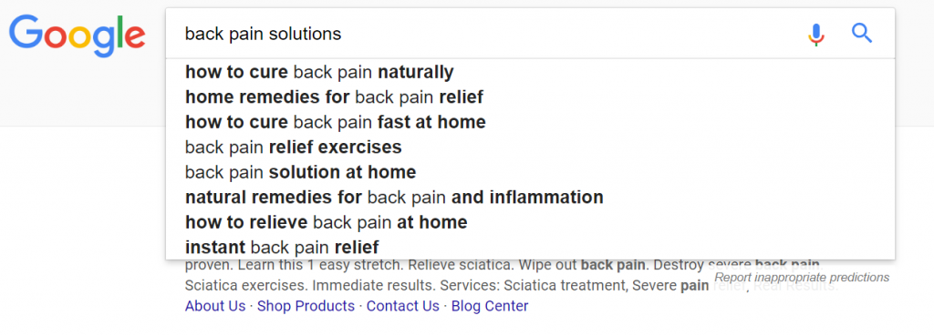 Screenshot of Google's predictive text feature for ideal reader research